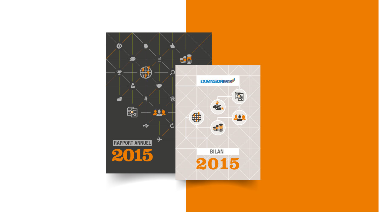 SNDEC, RAPPORT ANNUEL 2015